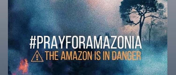 Incêndio na Amazônia: Anitta, Pabllo Vittar, Luísa Sonza, Demi Lovato, Ariana Grande e outros artistas se manifestam